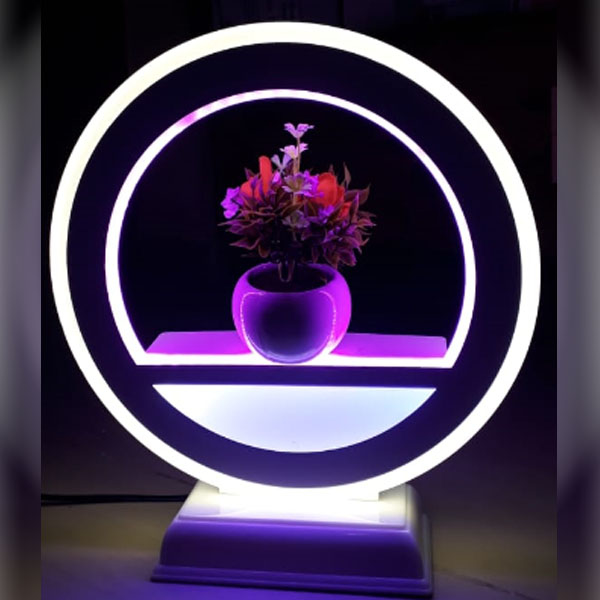 Picture of Led Light Frame With Flower Vase