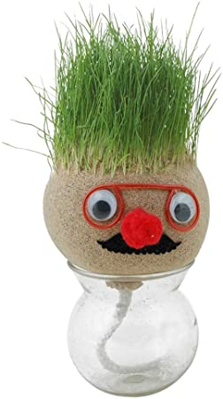 Picture of Growing Grass Dolls